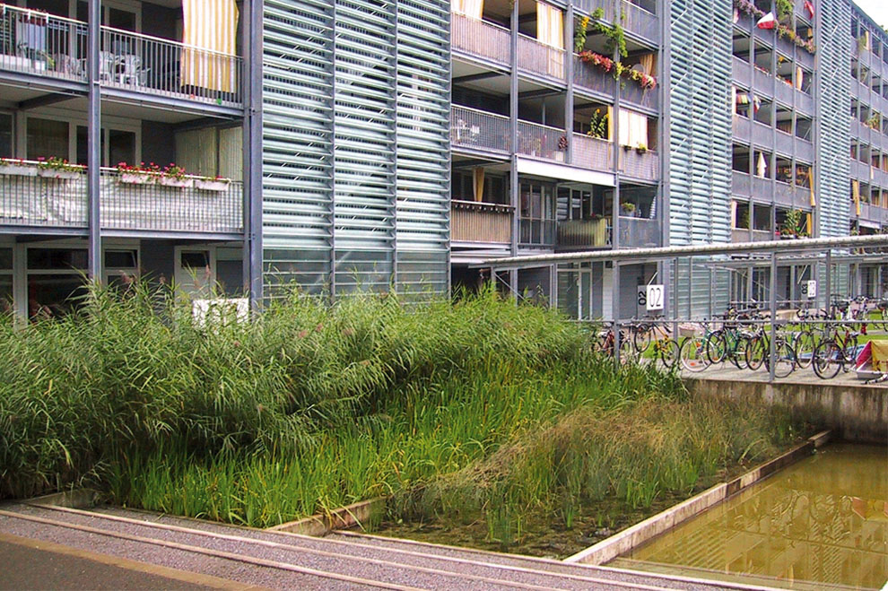 apartment landscape design. design checklist 3: stormwater quality is improved through plant filtration (e.g. reed beds), reducing the quantity of water discharged off-site apartment landscape
